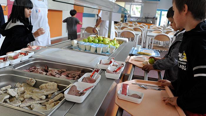 La restauration scolaire ville de lyon for Emploi restauration cantine scolaire