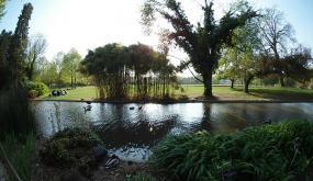 Parc de la Tête d'or au bord de l'eau