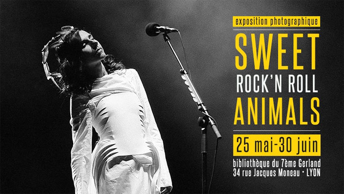 Sweet Rock'n'Roll Animals - Exposition photos de concerts de Kevin Pailler